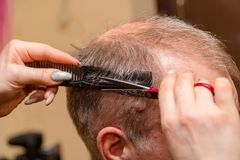 Woman hairdresser cuts a man with a receding hairline with scissors stock photos
