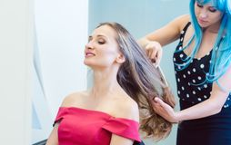 Woman hairdresser styling hair of customer in her shop stock photo