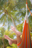 Woman in a Hammock. On a tropical beach stock image