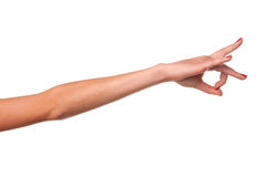 Woman hand. Royalty Free Stock Photography