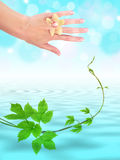 Woman hand above water level Stock Photography