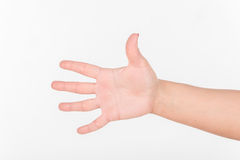 Woman Hand and All Five Fingers. White Bakcground. Woman Hand and All Five Fingers. White Bakcground royalty free stock images