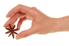 Woman hand with anise star. Isolated on white royalty free stock photo