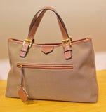 Woman hand bag Stock Image