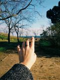Woman Hand on Bare Tree Against Sky royalty free stock image