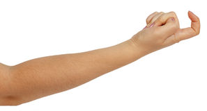 Woman hand beckoning. On a white background stock photography
