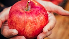 Woman hand with big red apple Stock Photography
