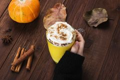 Woman hand in black sweater holding a cup of pumpkin latte with. Spices cinnamon, an anise and whipped cream on a wooden background Stock Photos