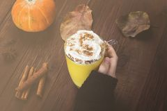 Woman hand in black sweater holding a cup of pumpkin latte with. Spices cinnamon, an anise and whipped cream on a wooden background. Toned Stock Photography