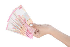 Woman hand carrying money Stock Image