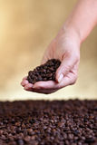 Woman hand with coffee beans Stock Photos