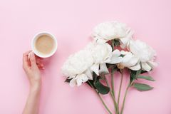Woman hand with cup of coffee and beautiful white peony flowers on pink pastel table top view. Cozy breakfast in flat lay style. Woman hand with cup of coffee stock images