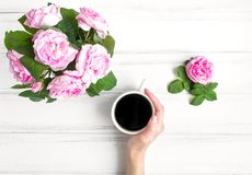 Woman hand with cup of coffee and roses against white vintage wooden table. Flat lay, top view stock images