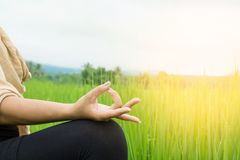 Woman hand doing yoga and meditation over nature green field. Asian woman hand doing yoga and meditation over nature green field with morning sunshine in Royalty Free Stock Photo