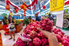 Woman hand with exotic dragon fruit on a local organic food market. royalty free stock photos