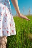 Woman hand in field Royalty Free Stock Photo