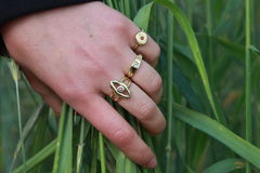Woman hand with golden rings Stock Photos