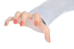 Woman hand grab. Isolated woman hand grab on white stock photography