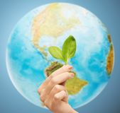 Woman hand with green sprout over earth globe Stock Photo