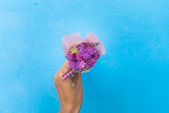 Woman hand holding bouquet of pink flowers stock image
