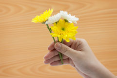 Woman hand holding a bunch of flowers On wood background Stock Photos