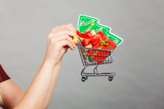 Woman hand holding cart with christmas tree royalty free stock photos