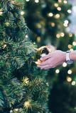 woman hand holding Christmas decoration, gift box and pine tree branches stock photo