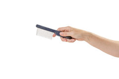 Woman hand is holding comb for grooming pets Royalty Free Stock Photography