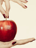 Woman hand holding delicious red apple Royalty Free Stock Photo