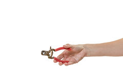 Woman hand holding dog nail clippers isolated Royalty Free Stock Photos