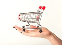 Woman hand holding empty shopping cart. Isolated on white background, side view. Advertising of food products and clothing. Shopping concept Stock Photos
