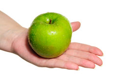 Woman hand holding fresh green apple. Woman holding fresh green apple isolated on white Royalty Free Stock Photos
