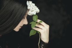 Woman hand holding fresh white lilac flowers to her face, very dark atmospheric sensual rural studio shot royalty free stock image