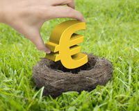 Woman hand holding golden Euro symbol in nest Stock Images