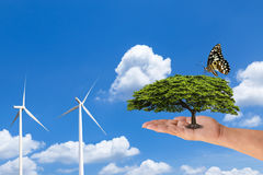 Woman hand holding green tree with butterfly and wind turbines on blue sky. Royalty Free Stock Image