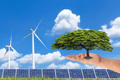 Woman hand holding green tree with photovoltaics solar panels and wind turbines on blue sky Stock Images