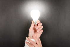 Woman hand holding an incandescent light bulb Royalty Free Stock Image