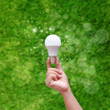 Woman hand holding LED bulb on green backgroud Stock Image