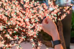 Woman hand holding the LED clear flower for decoration. Christmas and New Year concept royalty free stock image