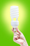 Woman hand holding light bulb on green background Royalty Free Stock Image