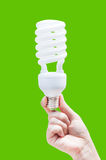 Woman hand holding light bulb on green background Royalty Free Stock Images