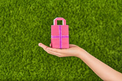 Woman Hand holding  little shopping bag Royalty Free Stock Images