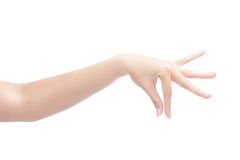 Woman hand holding object stock photo
