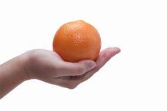 Woman hand holding orange isolated on white background Royalty Free Stock Photos