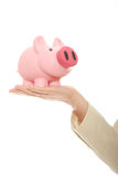 A woman hand holding a piggy bank Royalty Free Stock Images