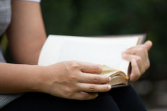 Woman hand holding and reading a book. In the nature park Royalty Free Stock Photos