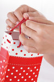 Woman Hand Holding Red Gift Bag with Present stock photography