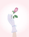 Woman' hand holding rosebud Royalty Free Stock Photo
