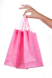Woman hand holding shopping bag Stock Photography
