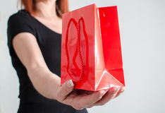 Woman hand holding shopping bag Royalty Free Stock Photography
